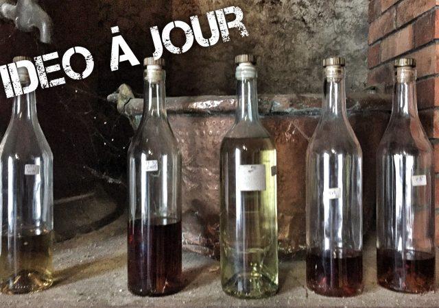 De Merpins à Juillac le Coq via Cognac